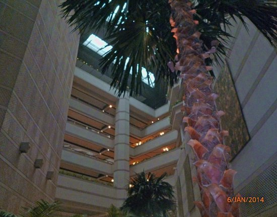 Taj Bengal Kolkata: Around the Hotel