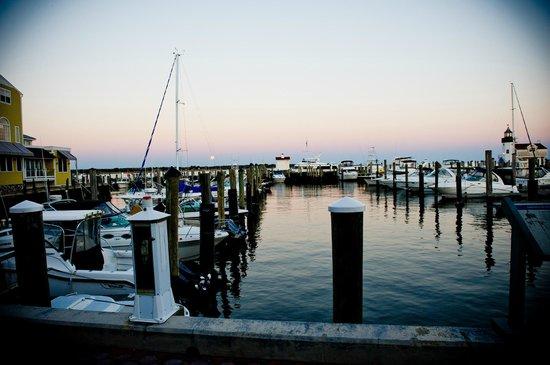 Saybrook Point Inn & Spa: harbor side