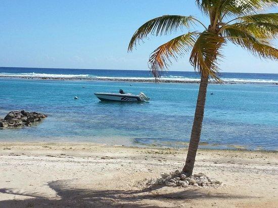 Carib Sands Beach Resort: from the lanai