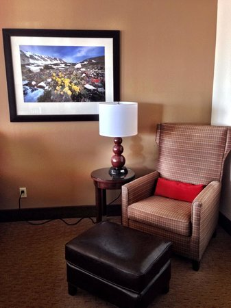 Radisson Hotel Colorado Springs Airport : sitting area