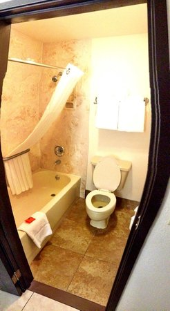Radisson Hotel Colorado Springs Airport: bathroom