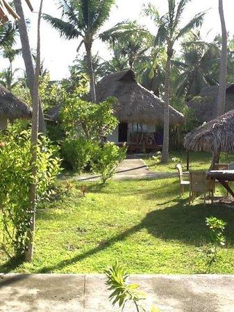 Hotel Raira Lagon : site du raira lagon