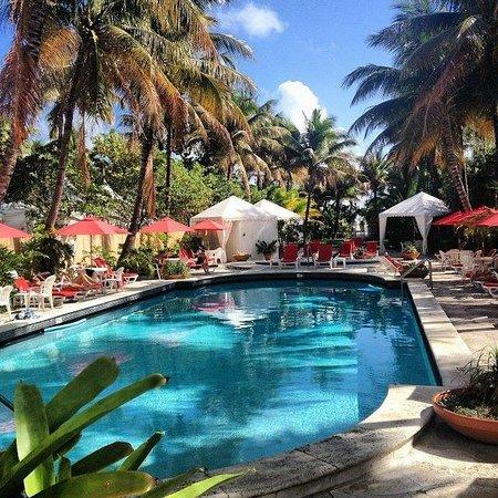 Richmond Hotel: Pool