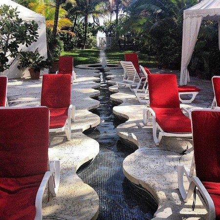 Richmond Hotel : Pool