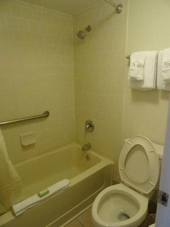 Avanti International Resort: banheiro
