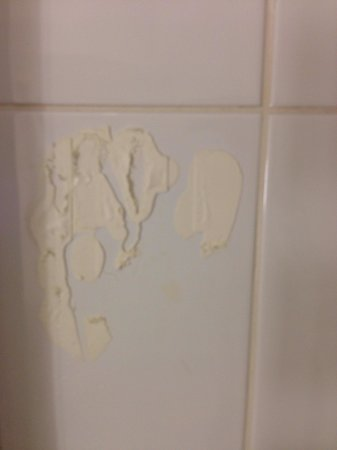 Ibis York Centre: Marks in shower where something was obviously once stuck