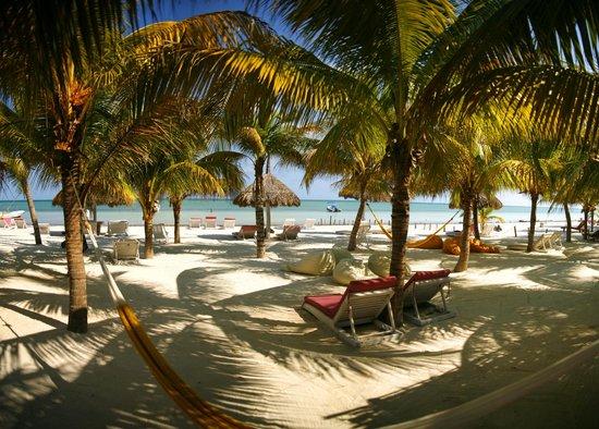 Beach fotograf a de holbox hotel casa las tortugas for Hotel casa de los azulejos tripadvisor