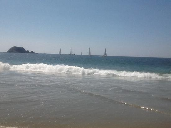 Holiday Inn Resort Ixtapa : sailfest parade