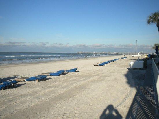 Sandalwood Beach Resort Reviews