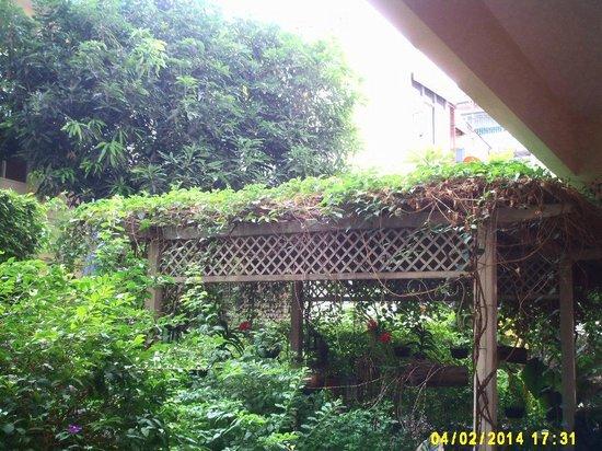 Feung Nakorn Balcony Rooms & Cafe: Jardim