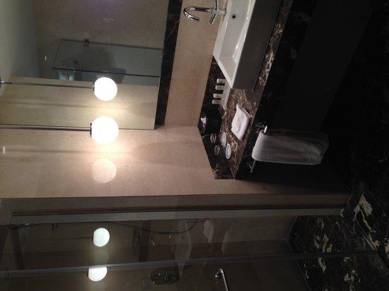 Le Meridien Pyramids Hotel & Spa : washroom