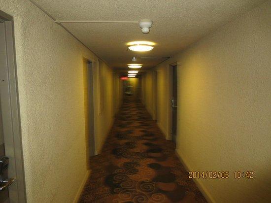 Yellowhead Inn: Hallway
