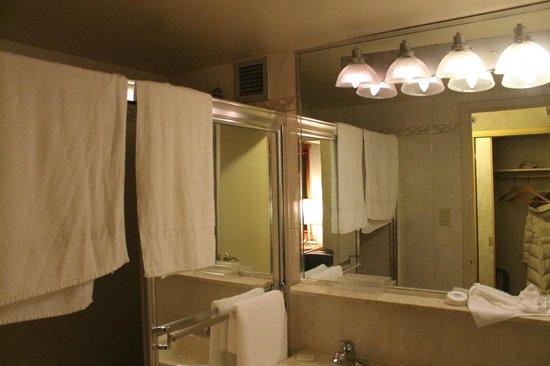 Travel Inn Hotel New York: ванная и санузел