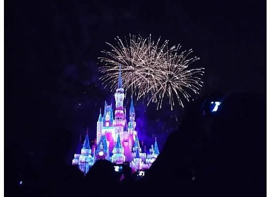 Magic Kingdom: The Castle at Night with Fireworks