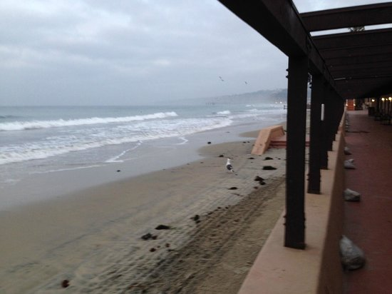 La Jolla Beach & Tennis Club: View from right out my door