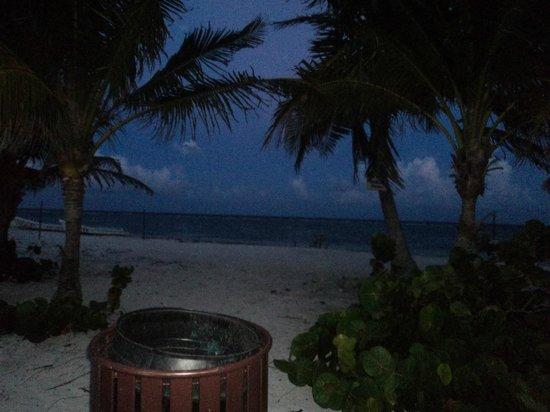 El Hotelito: caminando por la noche (hermoso todo)