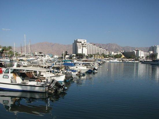 Leonardo Privilege Hotel Eilat: Лагуна недалеко от отеля