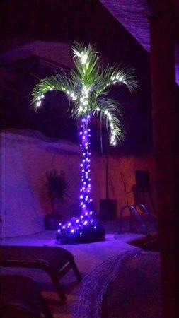 Hotel Cinco Sentidos : Christmas in Paradise