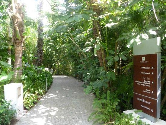 Grand Luxxe Nuevo Vallarta: beautiful walk path