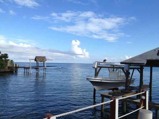 Seagrape Plantation Resort: View From Dive Shop