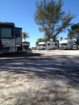 Red Coconut RV Park : view from our 4th row site