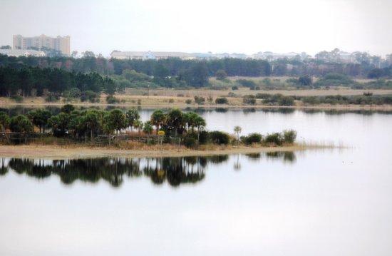 Westgate Lakes Resort y Spa: La vista desde la habitación
