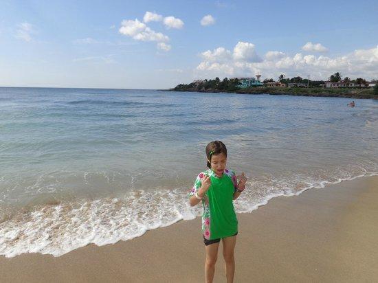 Hotel Rancho Luna: Beach