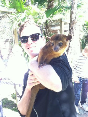 McCarthy's Wildlife Sanctuary : John with a Kinkajou