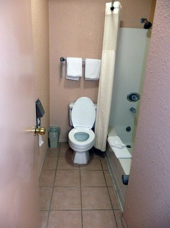 Quality Inn - Cottonwood: narrow, cramped tub/shower area with toilet