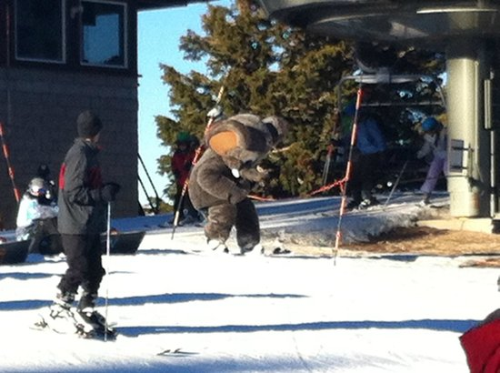 Mammoth Mountain: Skiing with Woolly