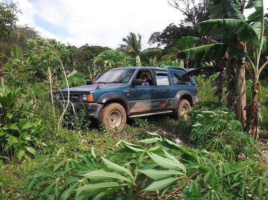 Mutalau, Niue: A5 4WD tour