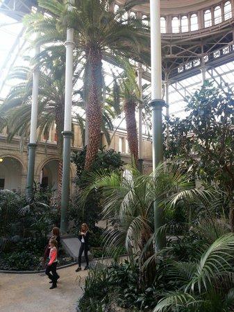 Gliptoteca Ny Carlsberg: Atriumet vid caféet.