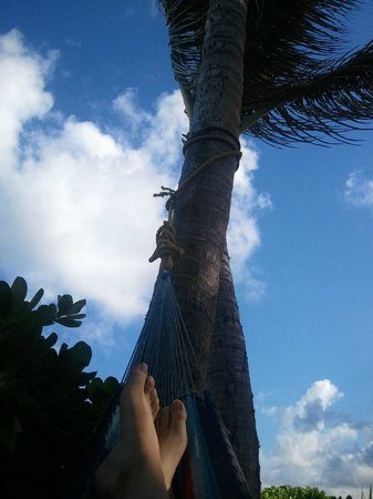 Tiki Moon Villas: Chillin in the hammock by the beach.