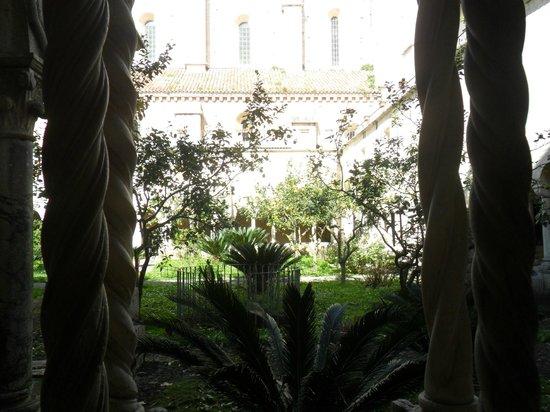 Abbazia di Fossanova : i limoni nella parte centrale del chiostro