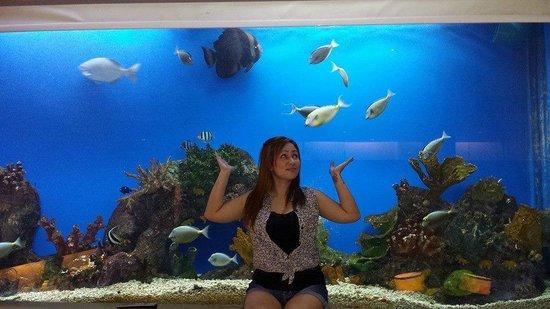 Hotel H2O: aqua room