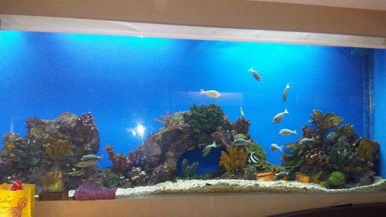 Hotel H2O : aqua room