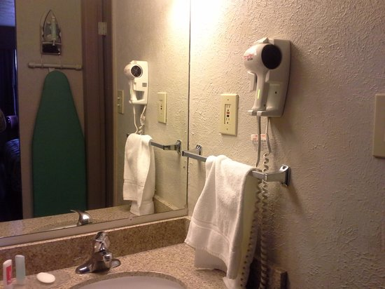 Econo Lodge Inn & Suites: Lavatory area