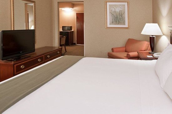 Holiday Inn Express & Suites Columbus Airport: Large Suite  King Bed with Sofa Bed Room