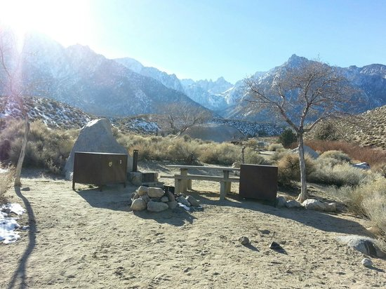 Lone Pine Campground: We chose #5