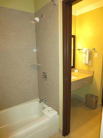 Econo Lodge Inn & Suites : Tub & shower
