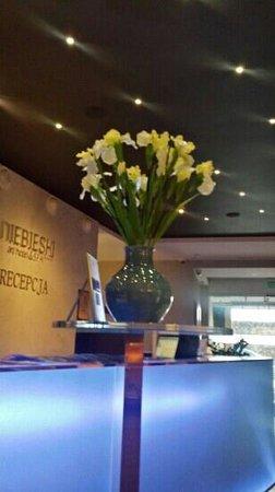 Niebieski Art Hotel & Spa : reception