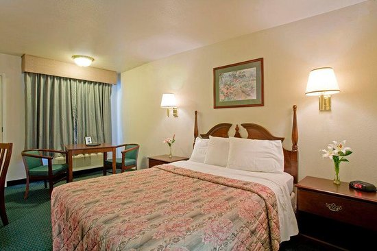 Americas Best Value Inn- Turlock Inn : One Queen Bed Deluxe
