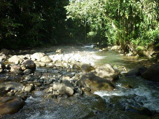 Cascade aux Ecrevisses : cascade aux écrevisses