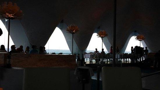 Perla: Amazing place to eat!