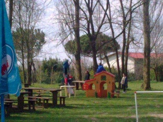 """giochi per i bimbi - Foto di il giardino del """" DELTA """", Bosco Mesola - TripAdvisor"""