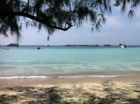 Nomads Koh Tao: Beach