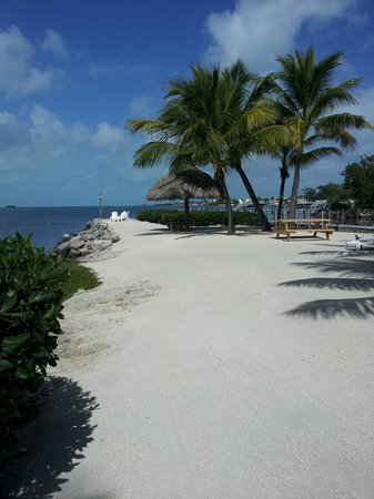 Atlantic Bay Resort : Beach area - nice place to sit and relax