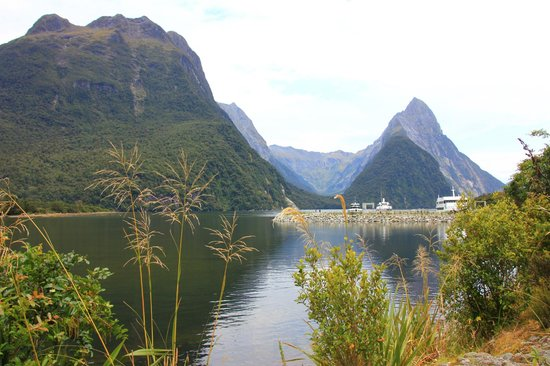 Lakeside Motel & Apartments: Milford Sound, don't miss
