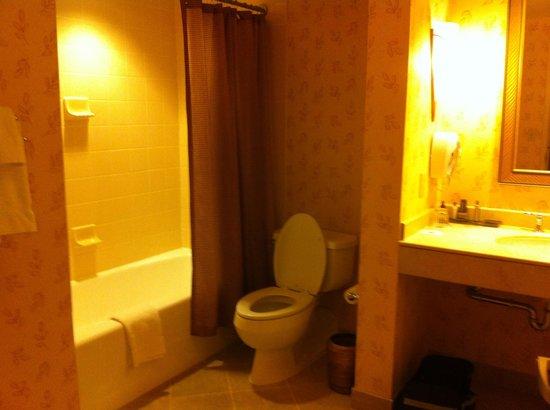 Little Rock Marriott: Bathroom room 1628