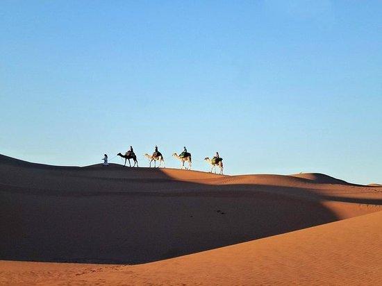 Dar Sidi Bounou : Camel ride